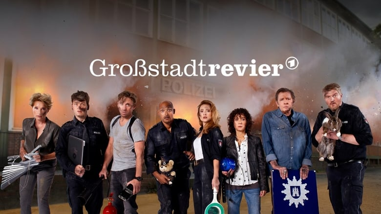Gro%C3%9Fstadtrevier