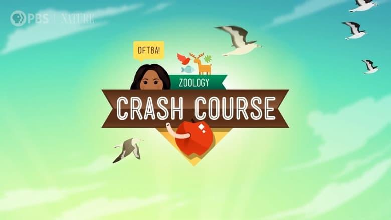 مشاهدة مسلسل Crash Course Zoology مترجم أون لاين بجودة عالية