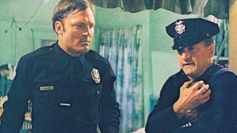 Les flics ne dorment pas la nuit
