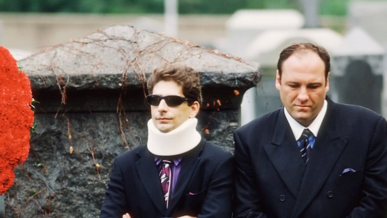 Sopranai: Mafijos kronika / The Sopranos (1999) 1 Sezonas