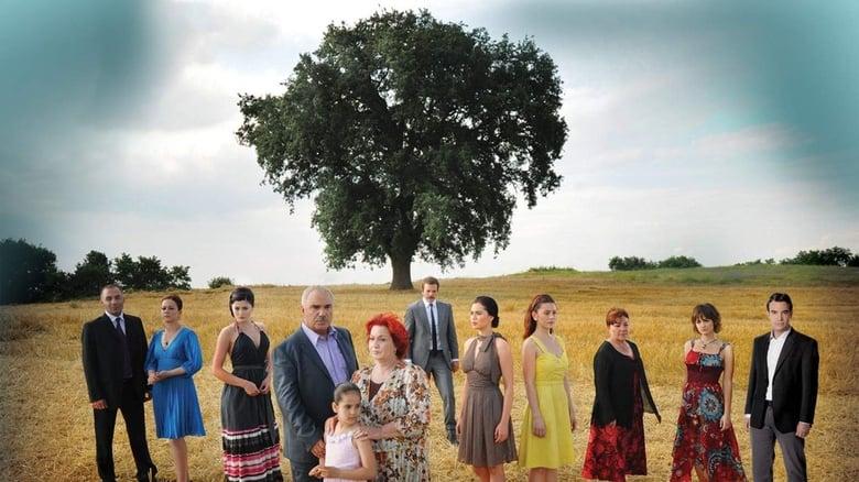 مشاهدة مسلسل Yaprak Dökümü مترجم أون لاين بجودة عالية