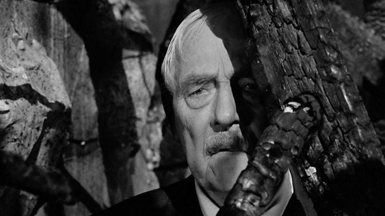 Watch Wild Strawberries 1957 Online tinyzonehd