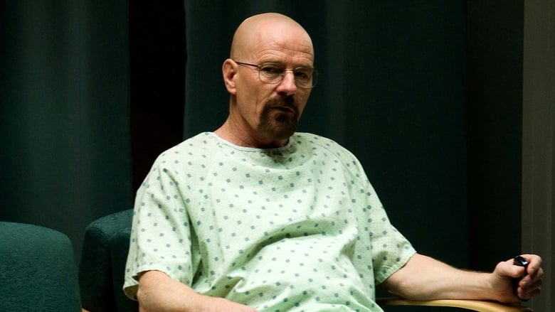 Breaking Bad: A Química do Mal: 4×8