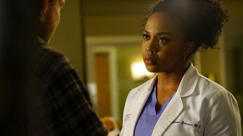 Greys Anatomy Online Subtitrat