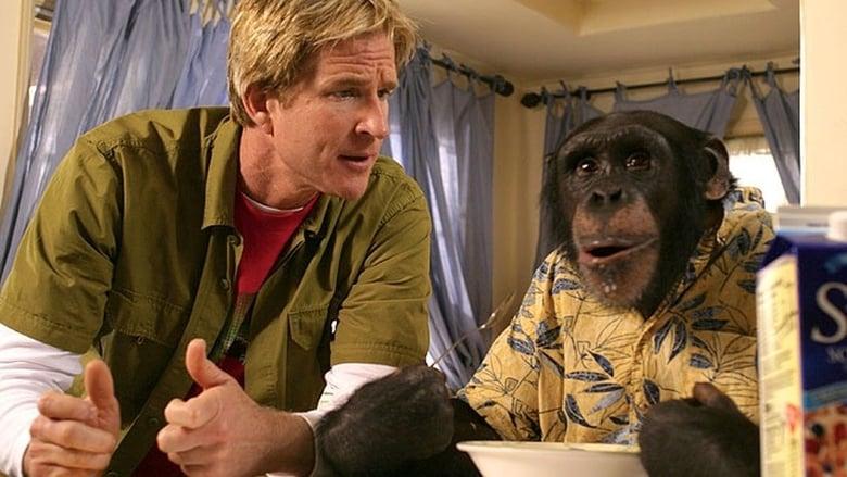 Watch Funky Monkey free