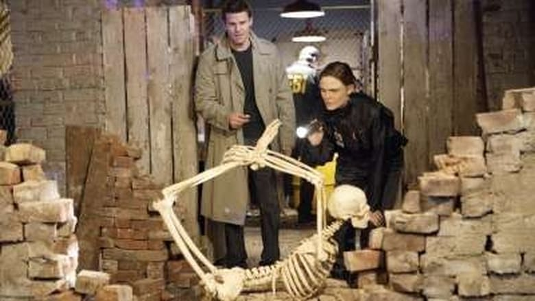 Bones Season 3 Episode 13