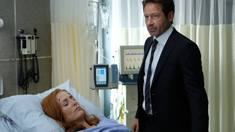X failai / The X-Files (2017) 11 Sezonas