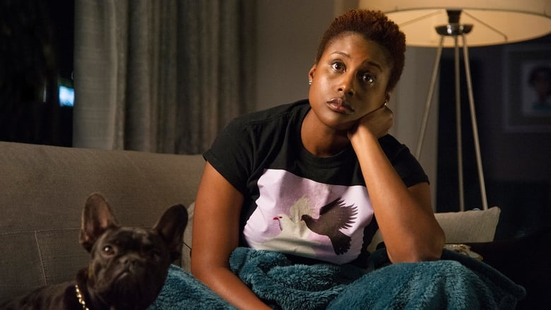 Insecure: 1×2