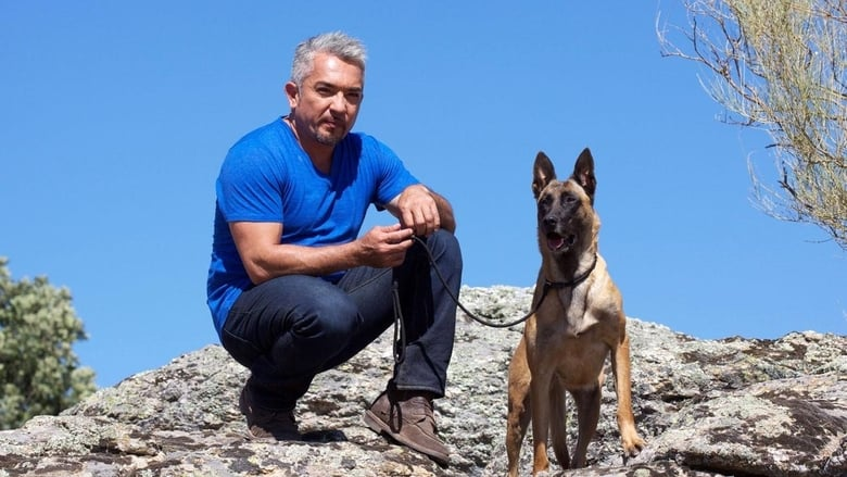 Cesar+Millan%27s+Leader+of+the+Pack