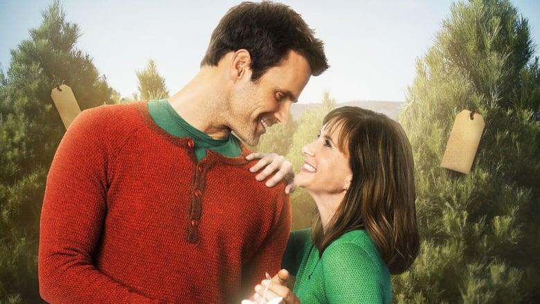 Voir Une rencontre pour Noël en streaming vf gratuit sur StreamizSeries.com site special Films streaming