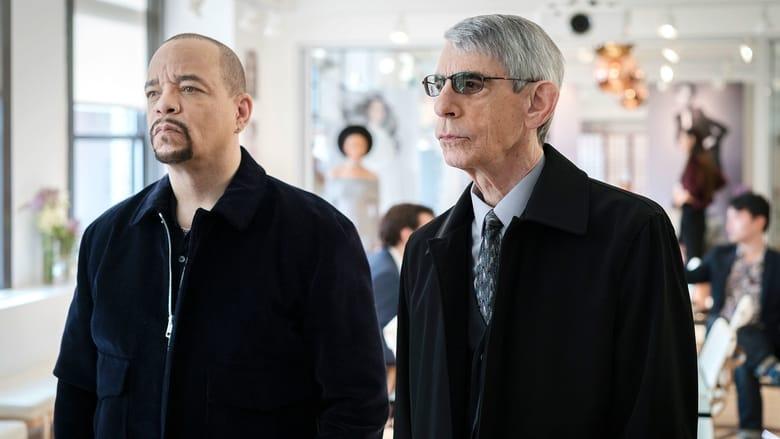 Law & Order: Special Victims Unit Season 17 Episode 20