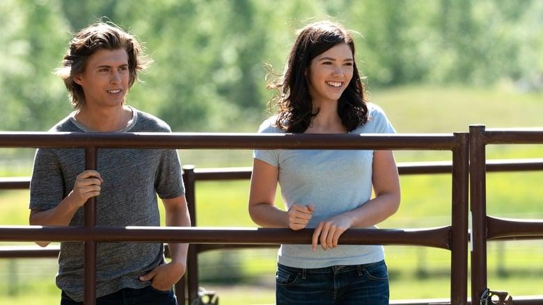 Heartland Season 12 Episode 5 - Myseries4you