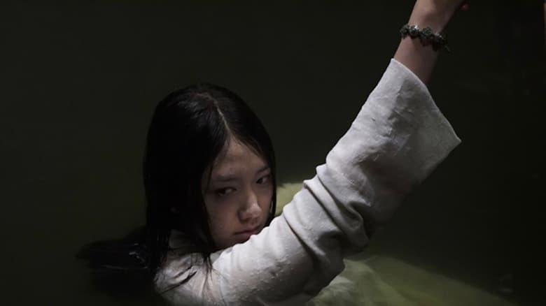 Voir The Evil Twin en streaming vf gratuit sur StreamizSeries.com site special Films streaming