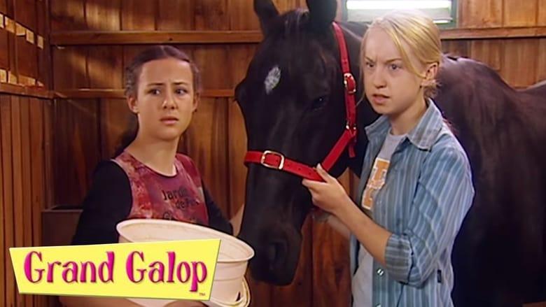 مشاهدة مسلسل The Saddle Club مترجم أون لاين بجودة عالية