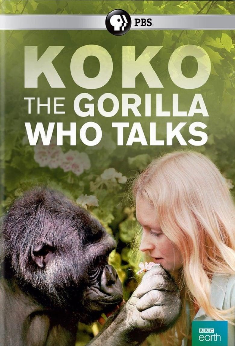 Koko: The Gorilla Who Talks to People (2016)
