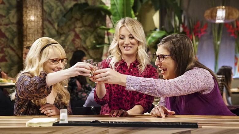 The Big Bang Theory Sezonul 11 Episodul 20