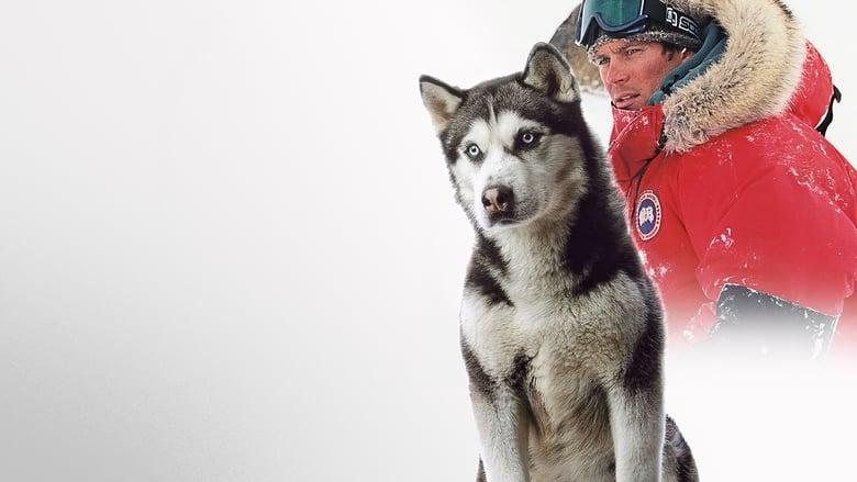 Rescate en la Antártida
