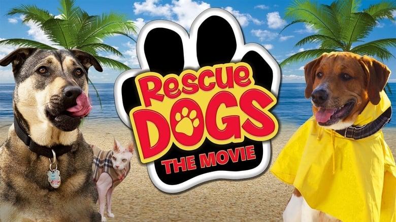 Voir Rescue Dogs streaming complet et gratuit sur streamizseries - Films streaming