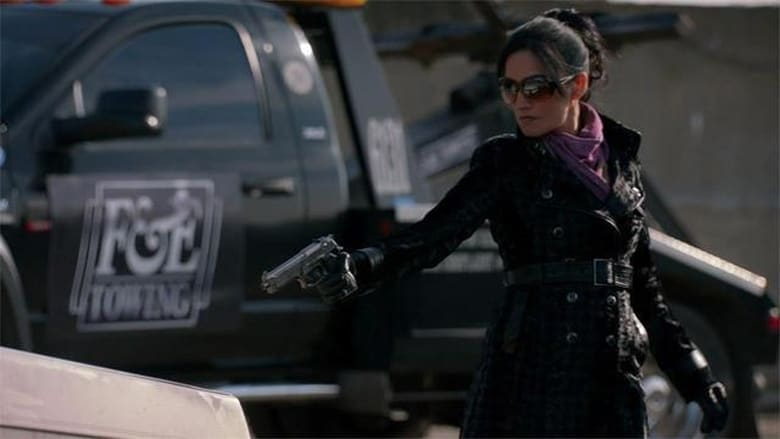 The Good Wife 4×10