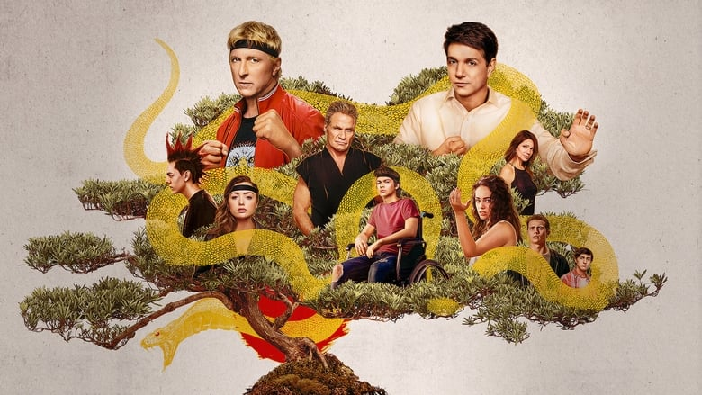 Cobra Kai Season 2 Episode 6 : Take a Right