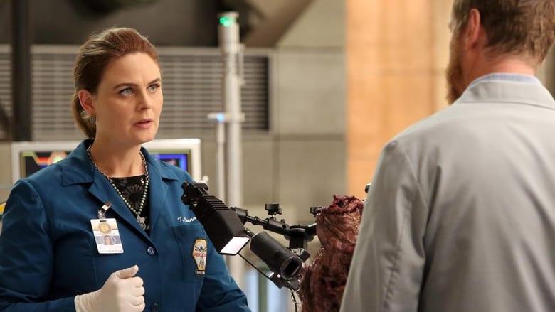 Bones Season 11 Episode 19