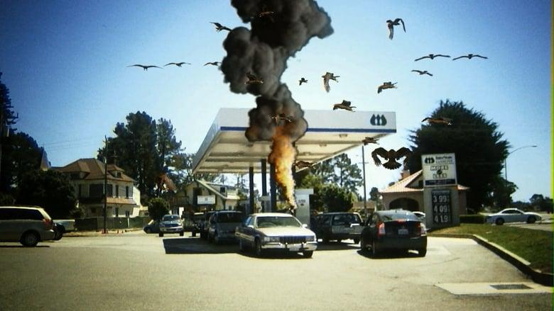 مشاهدة فيلم Birdemic: Shock and Terror 2010 مترجم أون لاين بجودة عالية