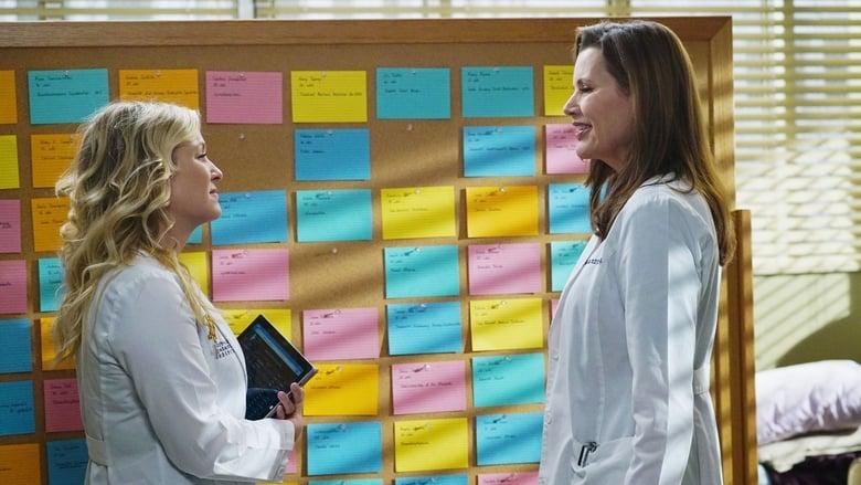 Grey's Anatomy: 11×13
