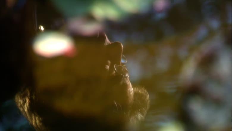 Battlestar Galactica Sezonul 3 Episodul 15 Online Subtitrat FSonline