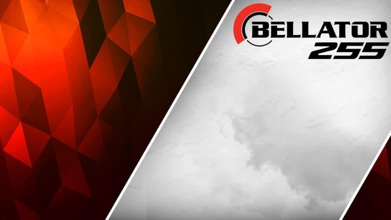 مشاهدة فيلم Bellator 255: Pitbull vs. Sanchez 2 2021 مترجم أون لاين بجودة عالية
