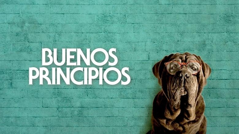 Mon+chien+stupide