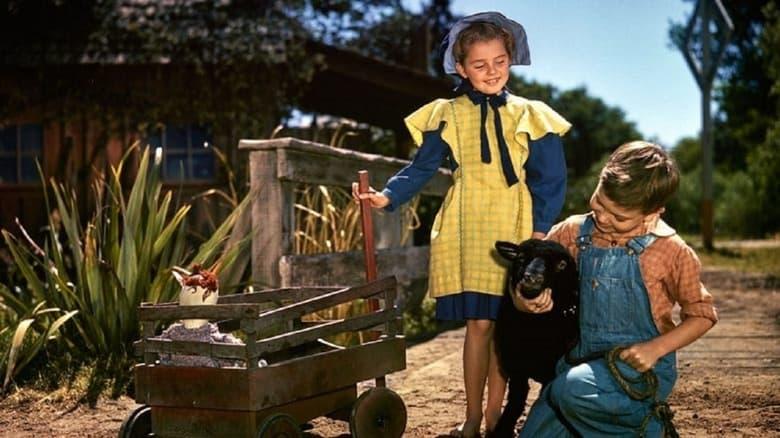 Voir Danny, le petit mouton noir en streaming vf gratuit sur StreamizSeries.com site special Films streaming