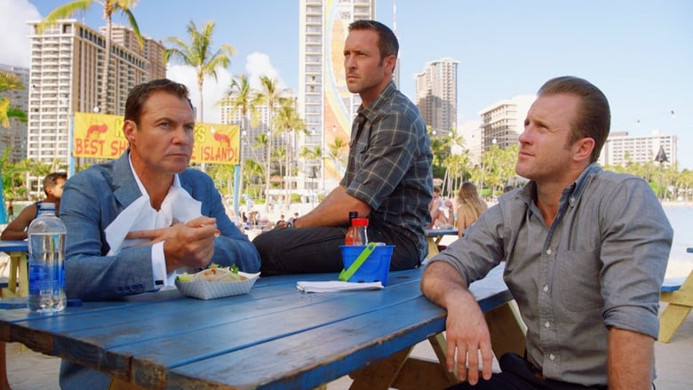 Hawai 5.0 Temporada 8 Capítulo 3