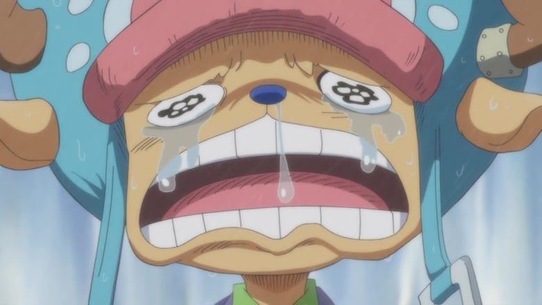 One Piece Episode 851 En streaming