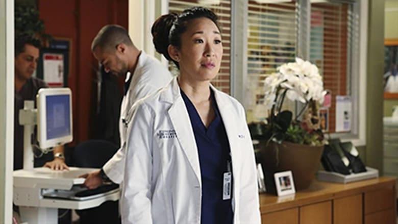 Grey's Anatomy Season 10 Episode 17