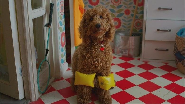 مشاهدة مسلسل Waffle the Wonder Dog مترجم أون لاين بجودة عالية