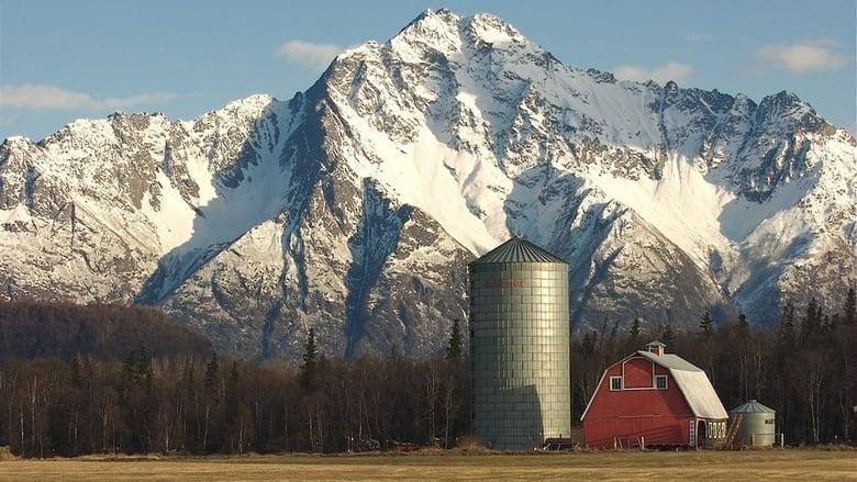 Film Alaska Far Away Jó Minőségű Ingyen