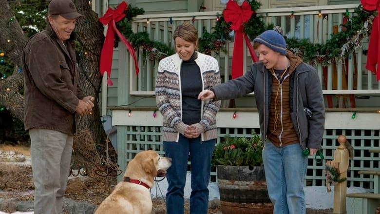 A+Dog+Named+Christmas