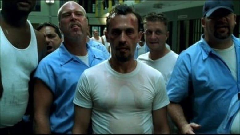 Prison Break: Em Busca Da Verdade: 1×6