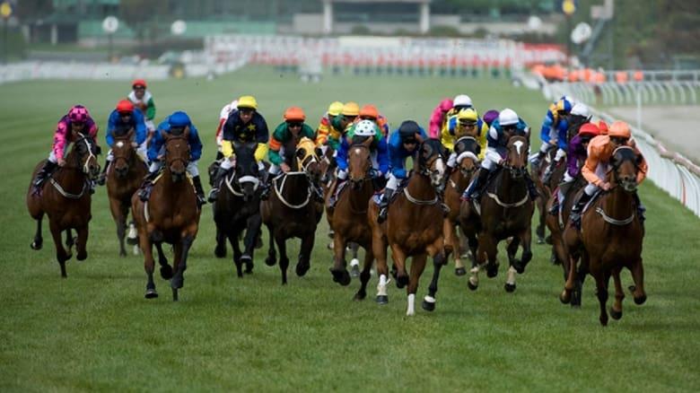 Voir The Cup en streaming vf gratuit sur StreamizSeries.com site special Films streaming