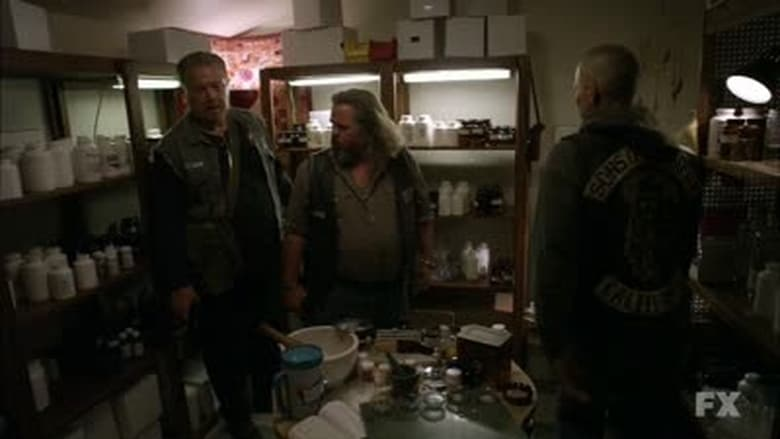 an overview of anarchy Sons of anarchy (season 1) the first season of the american television drama series sons of anarchy created by kurt sutter, about the lives of a close-knit outlaw.