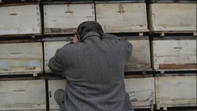 Regarder Film The Beekeeper Gratuit en français