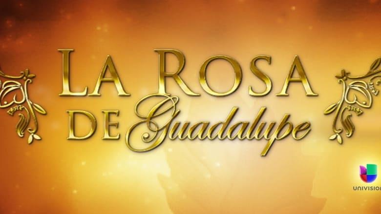 La+rosa+de+Guadalupe