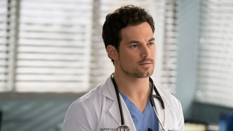 Grey's Anatomy Season 15 Episode 17