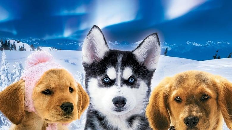 Snow+Buddies+-+Avventura+in+Alaska