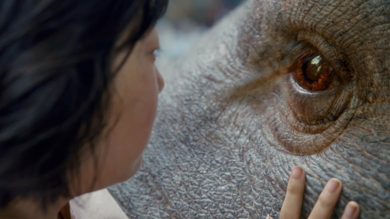 Download Okja 2017 HDRip Full English Movie Watching Online