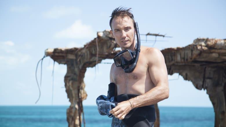 Regardez Sharkwater: Extinction Online HD Française (2018)