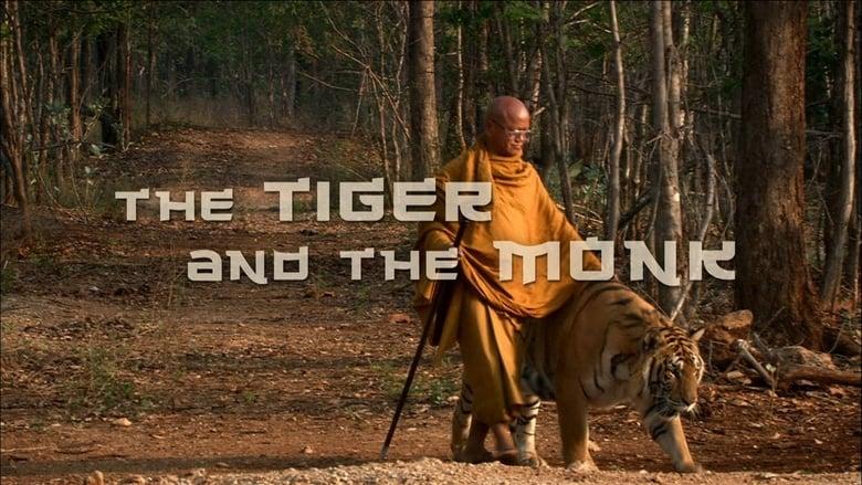Filme The Tiger and the Monk Grátis Em Português
