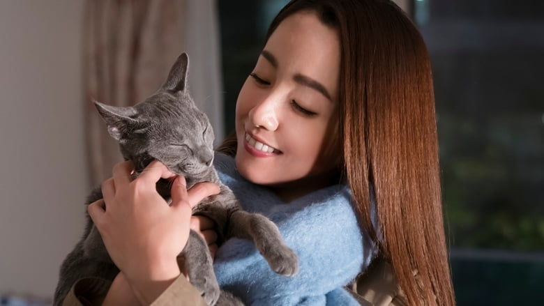 Watch The Cat In Their Arms free