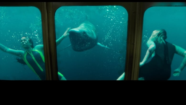 Watch 47 Meters Down: Uncaged Openload Movies