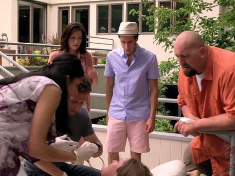 Aukštuomenės daktaras / Royal Pains (2010) 2 Sezonas